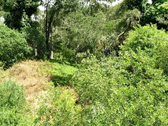 Residential Lots & Land - APTOS, CA (photo 4)