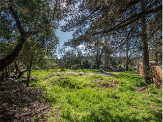 Residential Lots & Land - SCOTTS VALLEY, CA (photo 3)