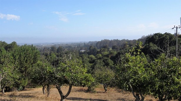 Residential Lots & Land - WATSONVILLE, CA (photo 5)