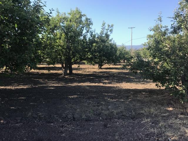 Residential Lots & Land - CORRALITOS, CA (photo 3)