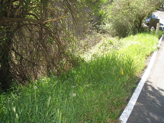 Residential Lots & Land - APTOS, CA (photo 1)