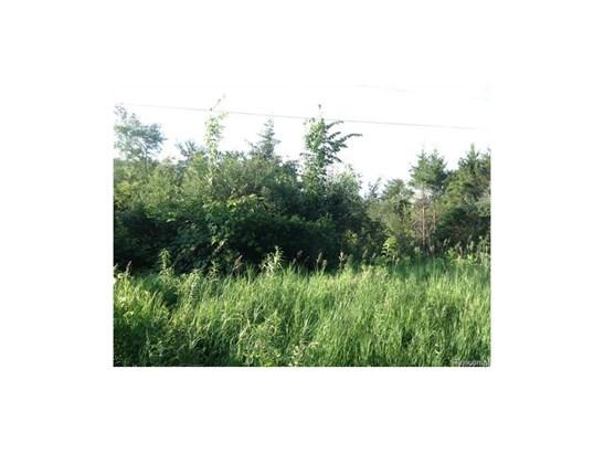 Photo C (photo 3)