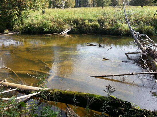 Ocqueoc River (photo 3)