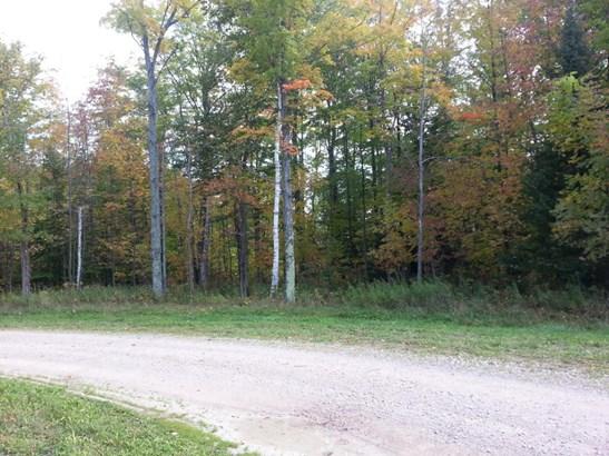 Woods from River Ridge (photo 5)