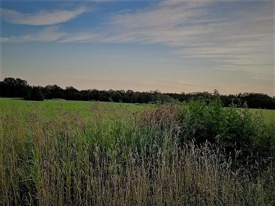 Posen property field (photo 1)