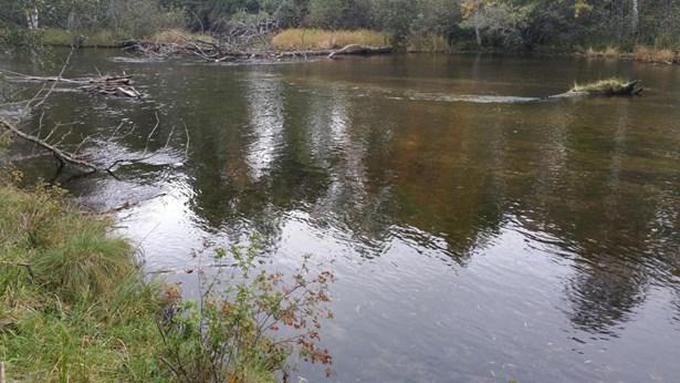 AuSable River (photo 5)