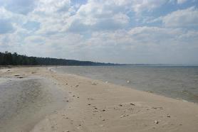 100' of sandy Lake Huron beach (photo 3)