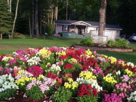 flowers (photo 1)