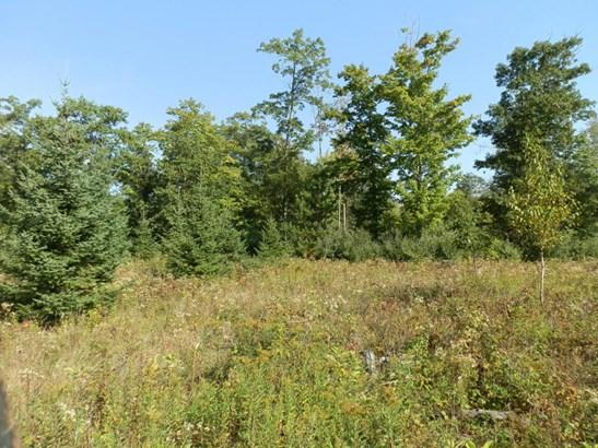 Trail (photo 3)