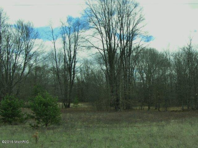 open area (2) (photo 2)