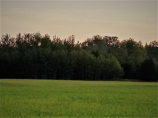 Woods on posen property (photo 2)