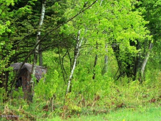Woods & Blind (photo 4)
