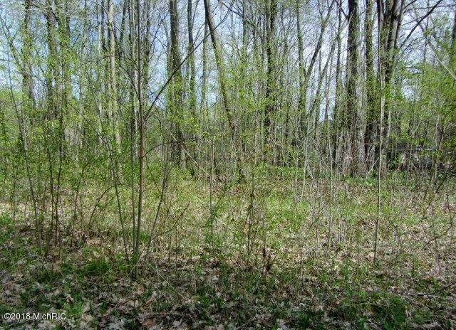 Wooded (photo 5)