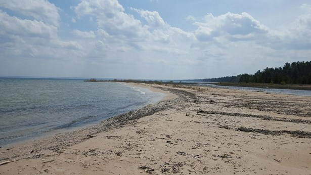 Shoreline (photo 1)