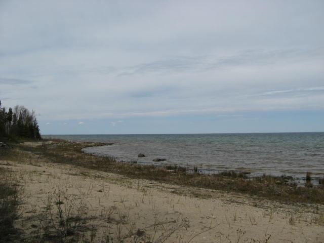 North View (photo 5)
