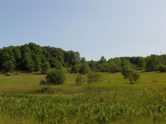 Summer 63 acres (photo 5)