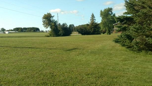 Side Yard (photo 4)