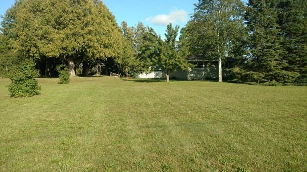 Side Yard (photo 5)