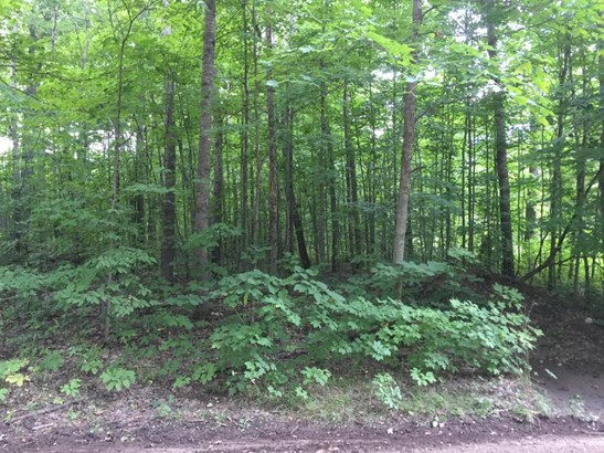 Deward Trail (photo 5)