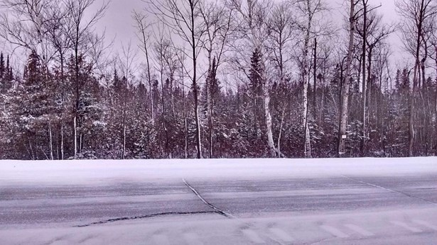 Roadside Pic (photo 3)