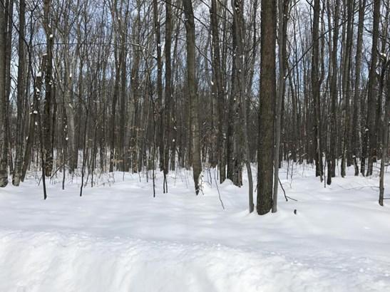 Deward Trail (photo 3)