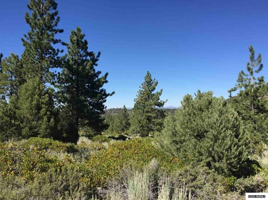Hwy 89 163.75 Acres, Markleeville, CA - USA (photo 3)