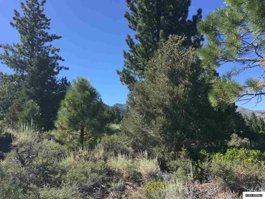 Hwy 89 163.75 Acres, Markleeville, CA - USA (photo 5)