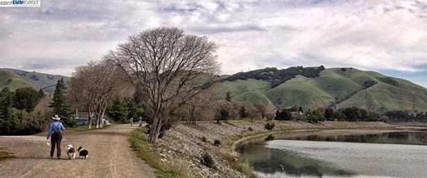 146 Sycamore St, Fremont, CA - USA (photo 4)