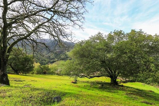 10225 Cinnabar Hills Road, San Jose, CA - USA (photo 1)