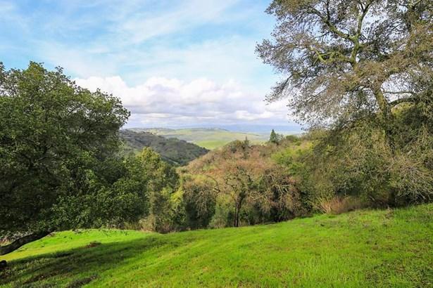 10225 Cinnabar Hills Road, San Jose, CA - USA (photo 2)