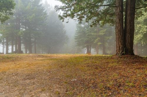 0 Summit Road, Corralitos, CA - USA (photo 5)