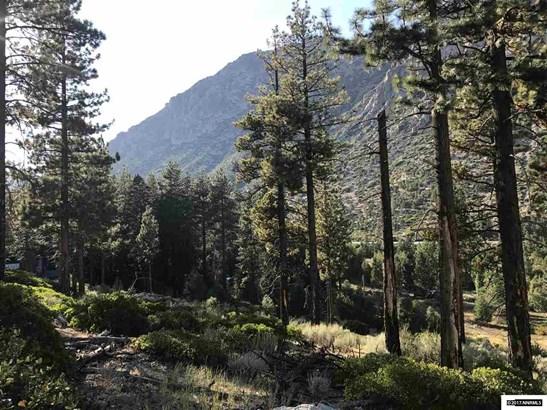 Apn 0109003600 Crystal Springs Road, Woodfords, CA - USA (photo 2)