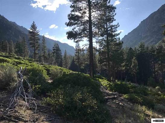 Apn 0109003600 Crystal Springs Road, Woodfords, CA - USA (photo 4)