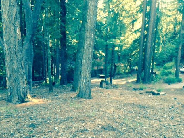 0 Woodland, Boulder Creek, CA - USA (photo 1)