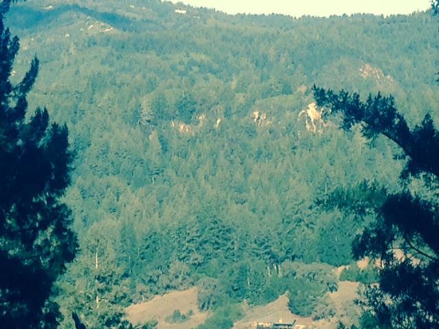 0 Woodland, Boulder Creek, CA - USA (photo 2)