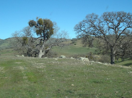 20391 Panoche  (willow Springs Ranch) Road, Paicines, CA - USA (photo 1)