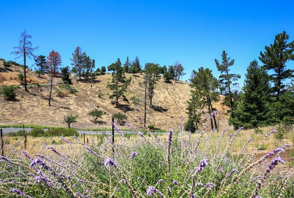 14938 Larga Vista Drive, Los Gatos, CA - USA (photo 2)