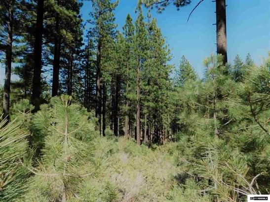 57 Canon View, Markleeville, CA - USA (photo 5)