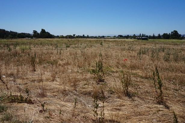 2030 Trumar Lane, Gilroy, CA - USA (photo 2)
