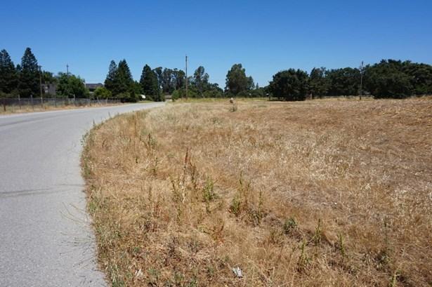 2030 Trumar Lane, Gilroy, CA - USA (photo 5)