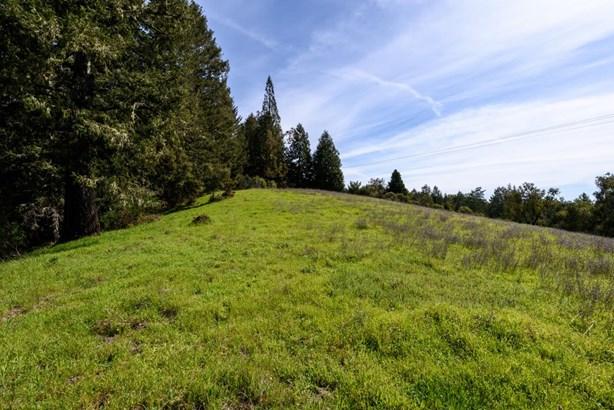 0 Alpine Road, La Honda, CA - USA (photo 4)