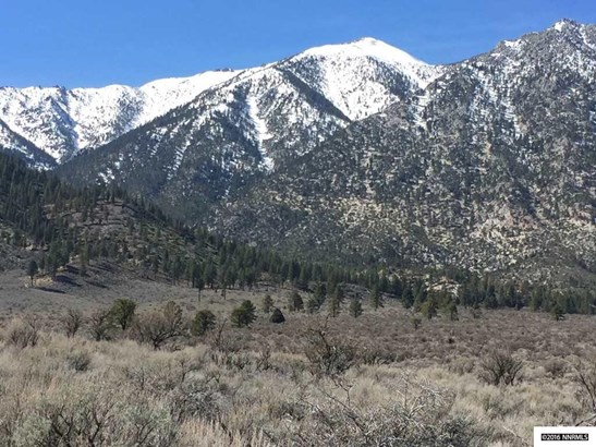 1 Foothill Road, Woodfords, CA - USA (photo 1)