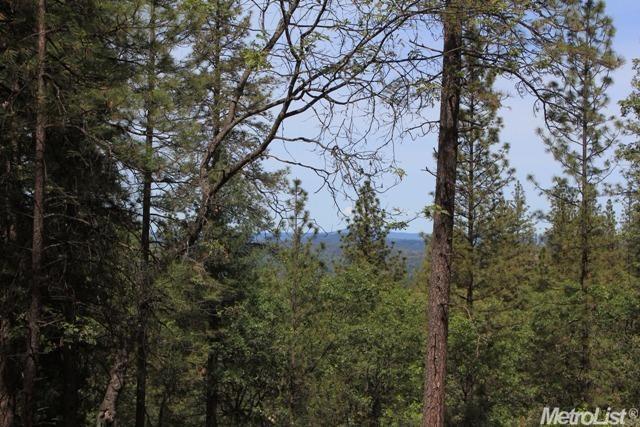 15120 Woodvale Lane, Meadow Vista, CA - USA (photo 3)
