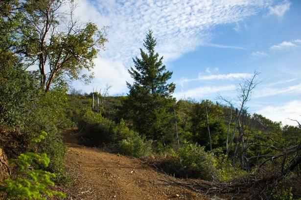0 Summit Road, Los Gatos, CA - USA (photo 4)
