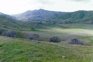0000 West Billie Wright Road, Los Banos, CA - USA (photo 1)