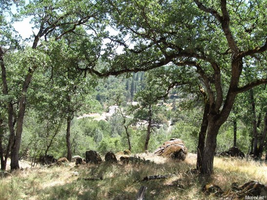 13655 Sun Forest, Penn Valley, CA - USA (photo 2)