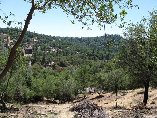 13655 Sun Forest, Penn Valley, CA - USA (photo 3)