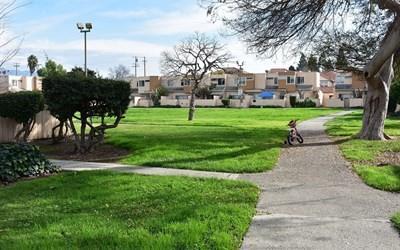 2133 Luz Avenue, San Jose, CA - USA (photo 1)