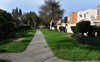 2133 Luz Avenue, San Jose, CA - USA (photo 2)
