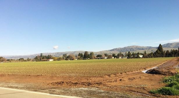 0000 Harding, San Martin, CA - USA (photo 3)